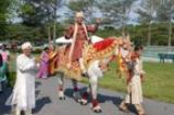 Groom Arrives - Groom arriving for Christian- Hindu ceremony on traditional white horse.