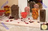 Candy Bar - Candy bars can be matched to your color or theme to add a unique aspect to your reception.