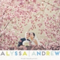 Alyssa Andrew Weddings & Boudoir